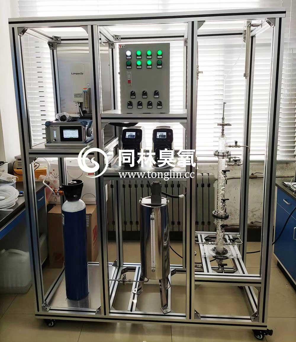 实验室臭氧催化氧化一体化实验装置(图1)